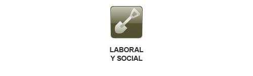Sector Laboral y Social