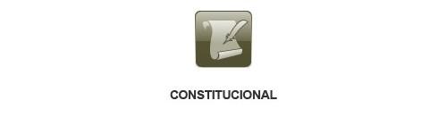 Sector Constitucional