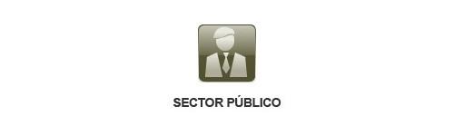 Sector Público - Administrativo