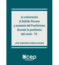 Vulneración al Debido Proceso y aumento de Punitivismo durante la pandemia del covid-19