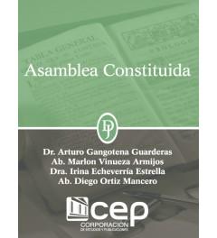 Asamblea Constituida